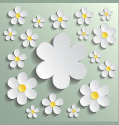 white chamomile pattern wrapping paper textile vector image