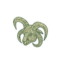 Manx Loaghtan Sheep Head Mono Line vector image