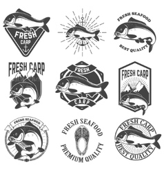 Set of the fresh carp labels emblems and design vector image vector image