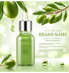 green repair serum with olive essence vector image