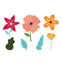 happy spring flowers petals leaves foliage vector image