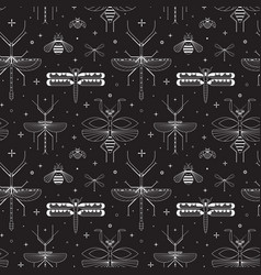 Line winged insects silhouettes pattern on black vector