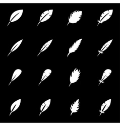 white feather icon set vector image