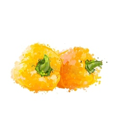 Yellow sweet peppers of blots vector image