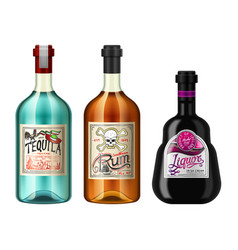 alcohol drinks in a bottle with different vintage vector image