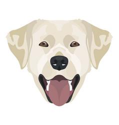 golden labrador retriever with smile vector image