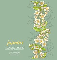 Jasmine background vector