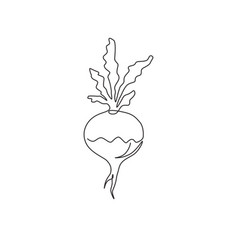 One continuous line drawing whole healthy vector
