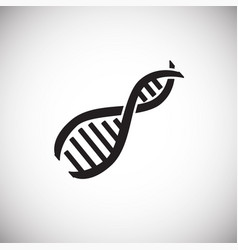 rna dna structure on white background vector image