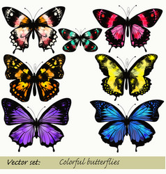 set of realistic butterflies for design vector image
