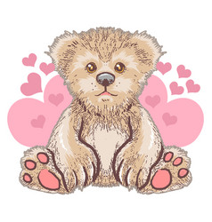 teddy bear love cute heart artwork vector image