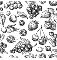 Wild berry seamless pattern drawing hand drawn vector