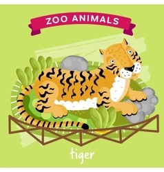 zoo animal tiger vector image