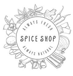 Hand drawn spice shop emblem vector image