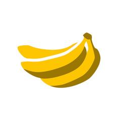 summer bananas vector image vector image