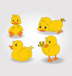 Character duck set vector