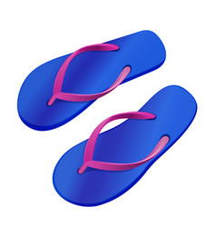 colorful summer flip flops vector image