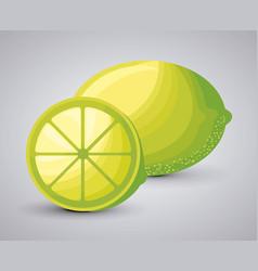 fresh lemon fruit with slice vector image