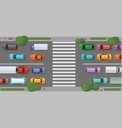 road with cars in front of pedestrian zone vector image