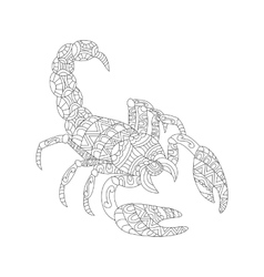 Scorpion coloring for adults vector image