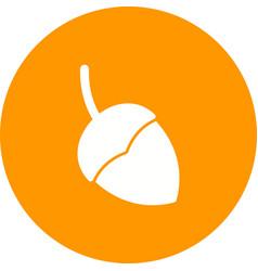 Single acorn vector