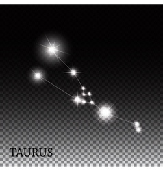 Taurus Zodiac Sign of the Beautiful Bright Stars vector