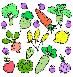 Vegetable set various doodles vector