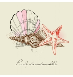 shells and starfish background vector image