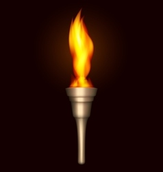 Burning torch vector