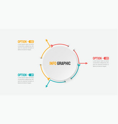 business infographic concept with 3 options vector image