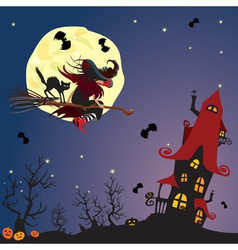 witch and black cat flying on broom vector image vector image