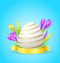 easter card with egg and crocuses vector image