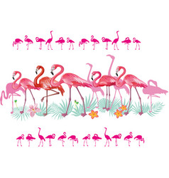 Border with flamingoes and tropical leaves vector