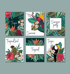 collection with six cards notes vector image