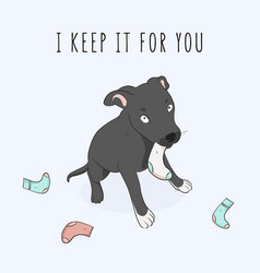 cute dog playing with socks ang funny text vector image