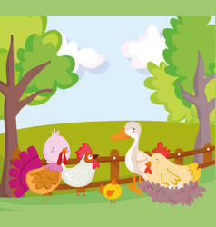 farm animals poultry goose duck rooster turkey hen vector image