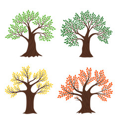 Four seasons trees seasonal tree vector