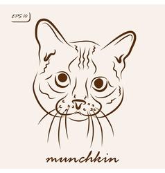 Munchkin vector