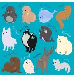 set cute cartoon winter north animal icon vector image