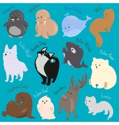 Set of cute cartoon winter north animal icon vector