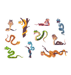 Snakes character cute animal mascot with funny vector