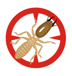 Soldier termite iconcartoon icon vector