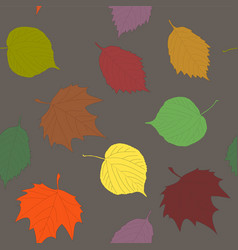 various autumn leaves seamless pattern linden vector image