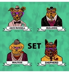 Hipster animals set dog Large group of dog breeds vector image