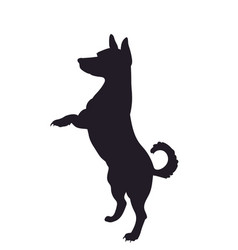 dog asking for food silhouette vector image