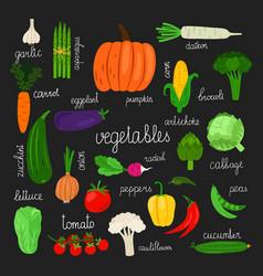 harvest fresh vegetables set vector image