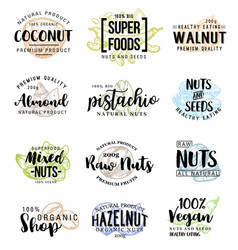 Nuts and beans lettering vector