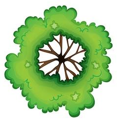 A birdeye view of a green plant vector image