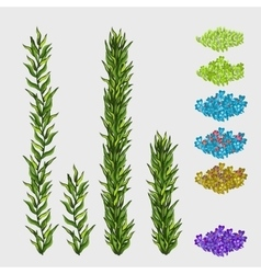Green grass and square flowerbeds different colors vector image vector image