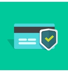 Credit card protection icon secure payment sign vector image